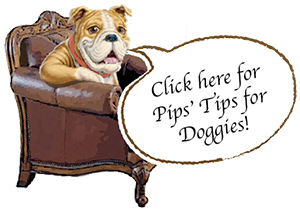 Pips Tips for Doggies